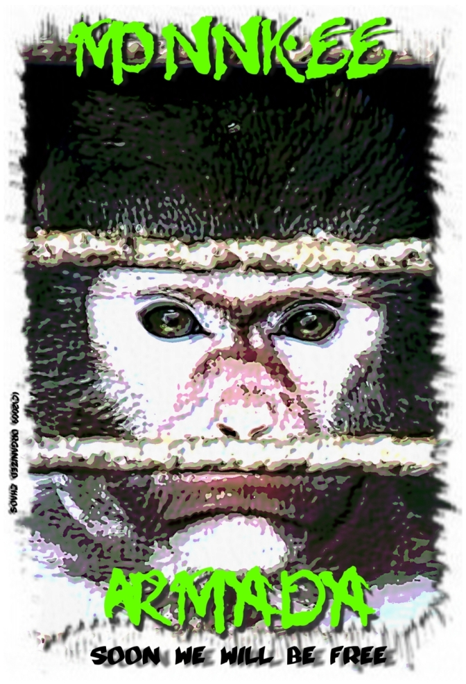 caged-monkee